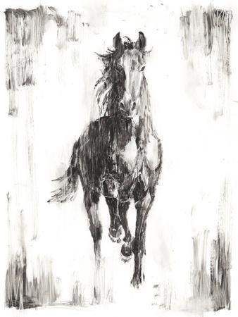 Rustic Black Stallion I