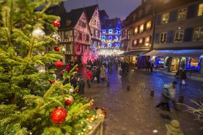 Colourful lights on Christmas trees and ornaments at dusk, Colmar, Haut-Rhin department, Alsace, Fr