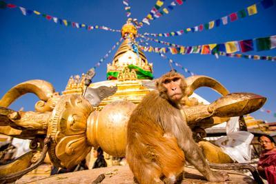 Sacred Monkey Temple (Swayambhunath Temple), UNESCO World Heritage Site, Kathmandu, Nepal, Asia