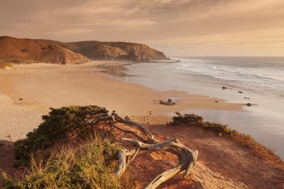 Praia do Amado beach at sunset, Carrapateira, Costa Vicentina, west coast, Algarve, Portugal, Europ