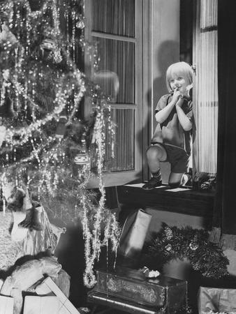 Young Boy Admiring Christmas Tree and Presents from Window