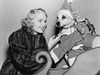 Woman with Dog in Christmas Outfit