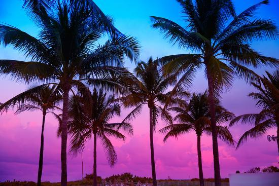 Sunset Over Beach Of Palm Trees Hd Wallpaper: Miami Beach South Beach Sunset Palm Trees In Ocean Drive