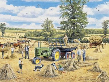 A Family Harvest