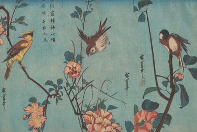 Titmouse and Camellias, Sparrow and Wild Roses and Black-naped Oriole and Cherry Blossoms, c.1833