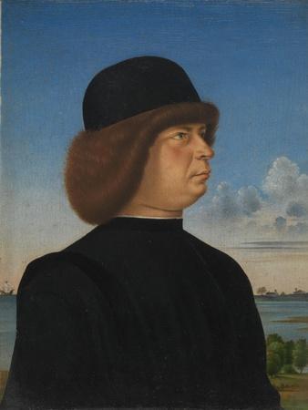 Portrait of Alvise Contarini, c.1485-95