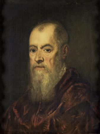Portrait of a Man with a Red Cloak, 1555-80