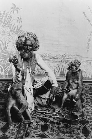 India, Fakir with monkeys, c.1890-1925