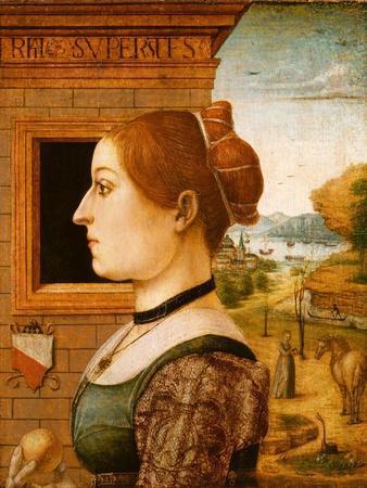 Portrait of a Woman, possibly Ginevra d'Antonio Lupari Gozzadini, c.1494