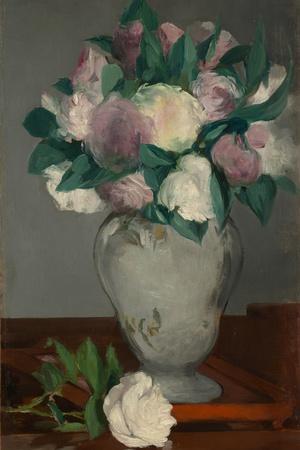 Peonies, 1864-65