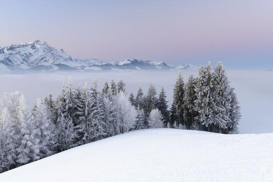 Frosty Winter Morning With A Pastel Sunrise Switzerland Appenzell