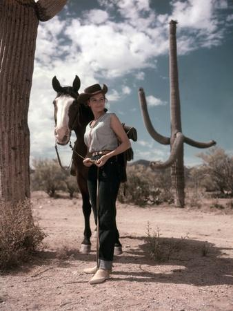 RIO BRAVO, 1959 directed by HOWARD HAWKS On the set, Angie Dickinson (photo)