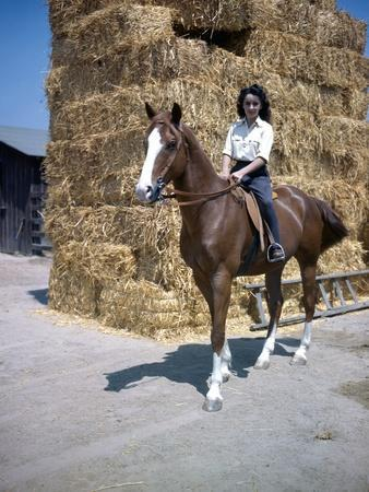 NATIONAL VELVET, 1944 directed by CLARENCE BROWN Elizabeth Taylor (photo)