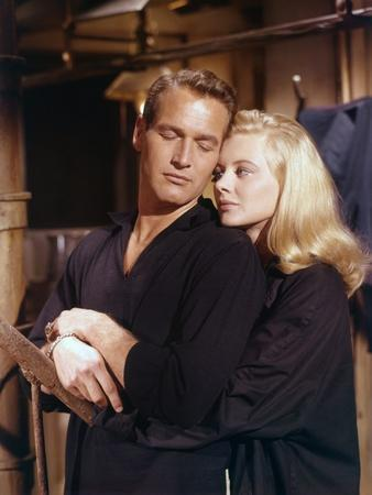 Doux oiseau by jeunesse SWEET BIRD OF YOUTH by RichardBrooks with Shirley Knight and Paul Newman, 1