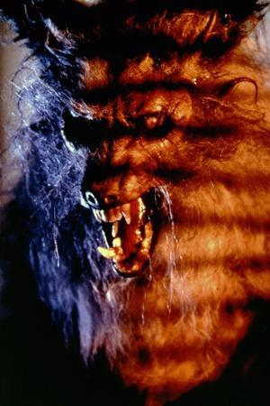 THE HOWLING, 1981 directed by JOE DANTE (photo)