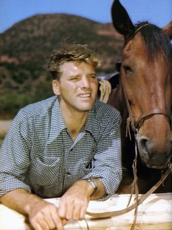 La Vallee by la Vengeance VENGEANCE VALLEY by RichardThorpe with Burt Lancaster, 1951 (photo)