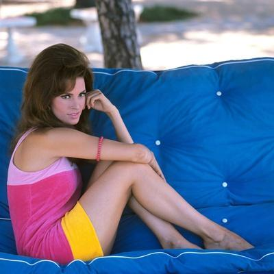 American actress Raquel Welch born spetember 5th, 1940 in Chicago, here 1964 (photo)
