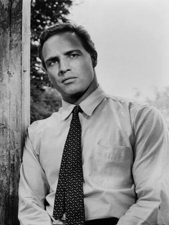 L' homme a la peau by serpent The Fugitive Kind by Sidney Lumet with Marlon Brando, 1959 (b/w photo