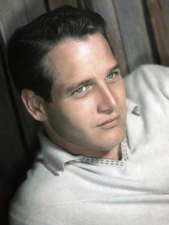 PAUL NEWMAN in the 50's (photo)