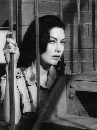 BHOWANI JUNCTION, 1956 directed by GEORGE CUKOR Ava Gardner (b/w photo)