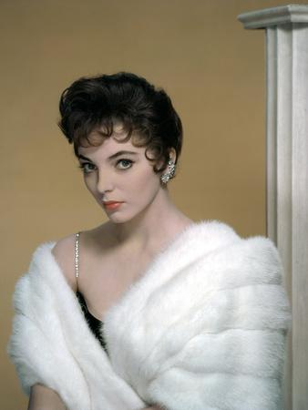 British actress Joan Collins in the 50's (photo)