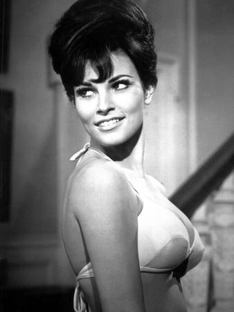 RAQUEL WELCH, 1965 (b/w photo)