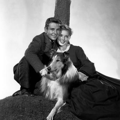 HILLS OF LASSIE, 1948 DIRECTED OF FRED M. WILCOX Tom Drake, Pal and Janet Leigh (b/w photo)