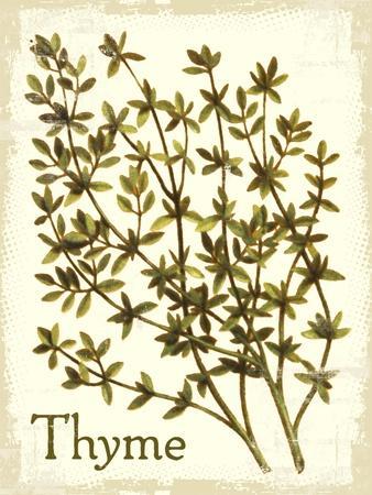 Savory Thyme