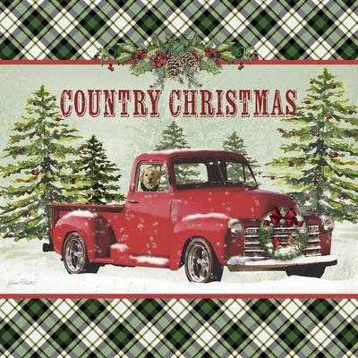 JP3674-Country Christmas