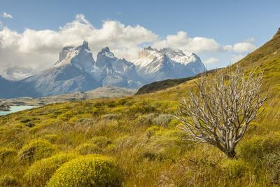 Chile, Patagonia. Lake Pehoe and The Horns mountains.