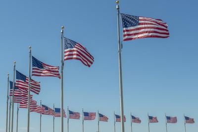 Flags by Washington Monument, Washington DC, Usa