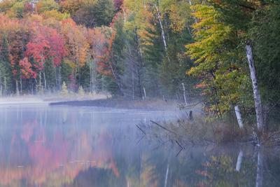 Autumn colors and mist on Council Lake at sunrise, Hiawatha National Forest, Michigan.