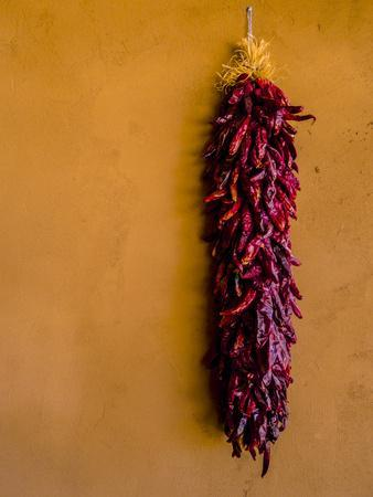 Santa Fe, New Mexico. Dried Red Chili Peppers and a Terra Cotta wall.