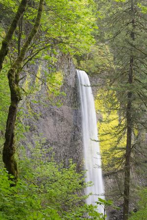 Oregon, Columbia River Gorge National Scenic Area, Latourell Falls