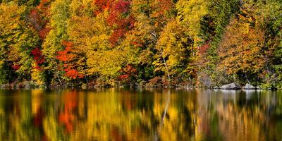 USA, New Hampshire, White Mountains, Reflections on Russell Pond