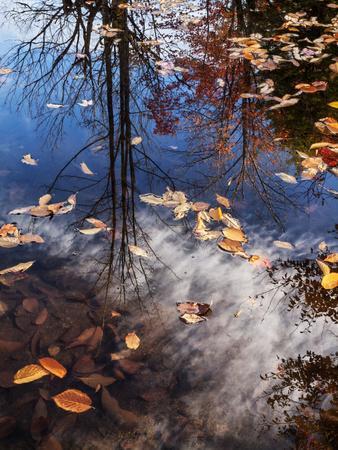 USA, New Hampshire, White Mountains, Fall reflections on Pemigewasset River
