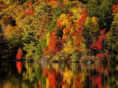 USA, New Hampshire, White Mountains, Fall reflection on Russell Pond