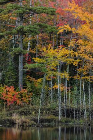 Small lake with autumn color, Marquette, Michigan USA