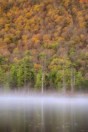 USA, New York State. Autumn foliage and mist on Labrador Pond.