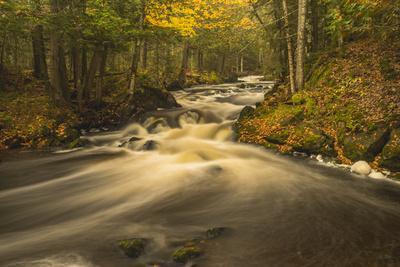 USA, Michigan. Fall Colors, Stream