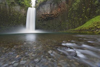 USA, Oregon. Abiqua Falls plunges into large pool.