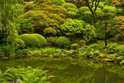 Summer, Upper Pond, Strolling Garden, Portland, Oregon, USA