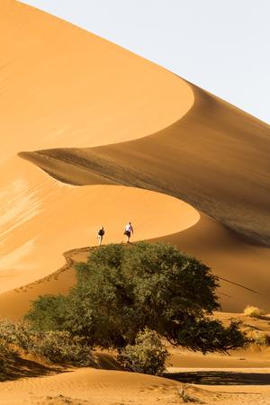 Namibia, Namib-Naukluft National Park, Sossusvlei. Two tourists climbing the scenic dune.