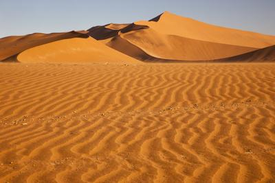 Namibia, Namib-Naukluft National Park, Sossusvlei. Scenic red dunes with wind driven patterns.
