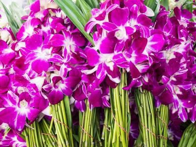 Thailand, Bangkok Street Flower Market. Flowers ready for display.