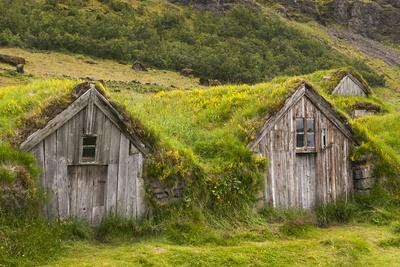 Iceland, Nupsstadur Turf Farmstead. Old homes covered with turf for protection and insulation.