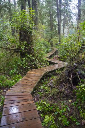 Combers Beach Trail, Pacific Rim National Park, Vancouver Island, British Columbia, Canada