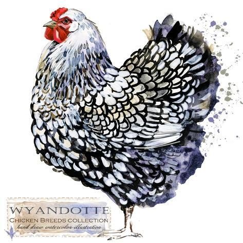 Novelty Photo Frame Farm Chickens