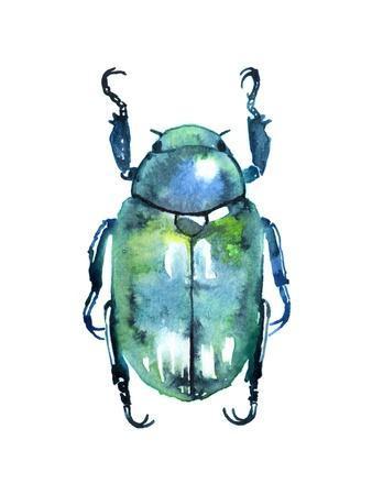Chromatic Blue Beetle