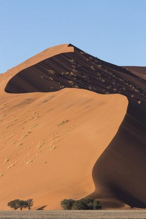An s-curve on a tall orange-sand dune in Sossusvlei within Namib-Naukluft National Park, Namibia.